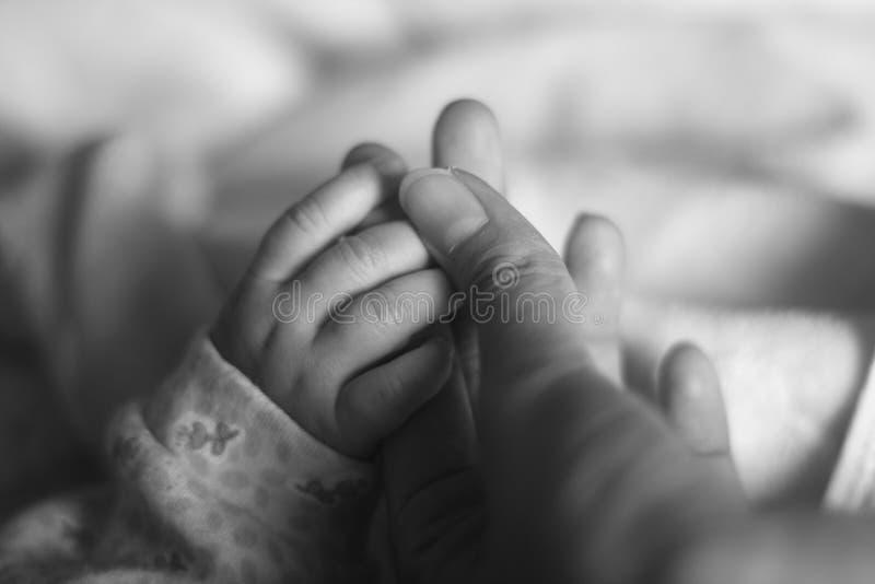 Mano del bebé fotografía de archivo libre de regalías