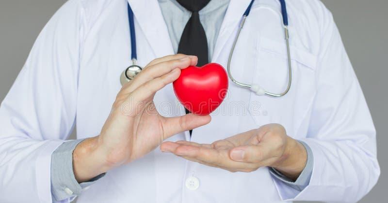 Mano del doctor que celebra el corazón, la atención sanitaria del concepto y médico rojos en la oficina fotos de archivo