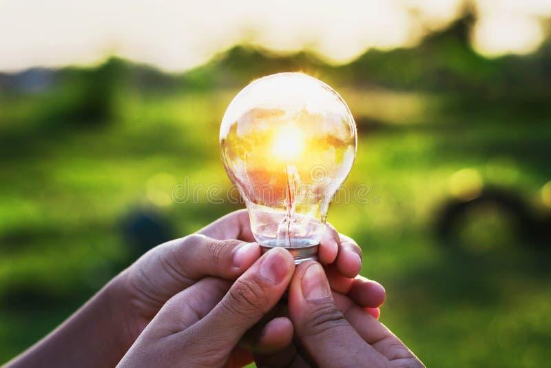 mano del grupo que sostiene la bombilla con puesta del sol ene solar de la idea del concepto fotografía de archivo