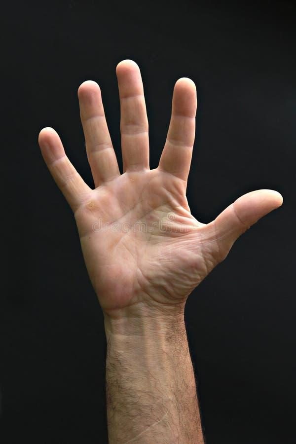 mano del hombre foto de archivo