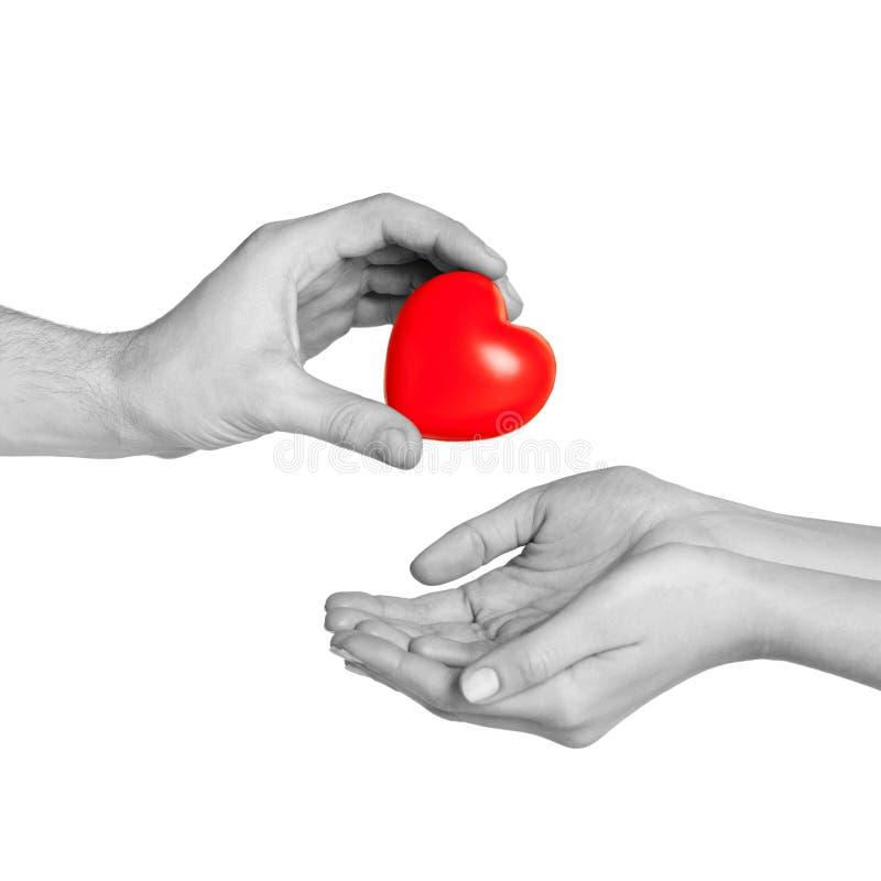 Mano del hombre que da el corazón rojo a la mujer imagenes de archivo