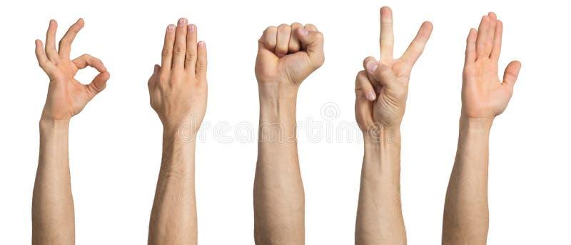 Mano del hombre que muestra diversos gestos imagen de archivo