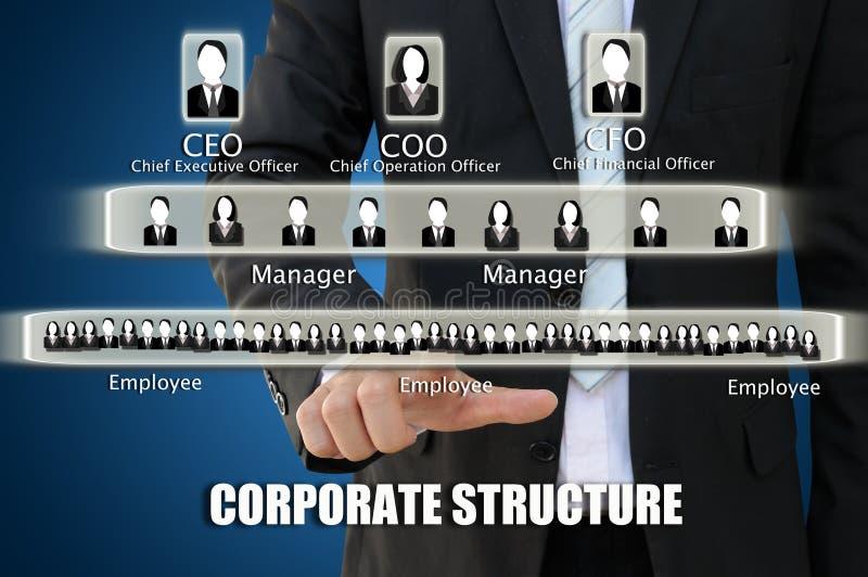 Mano del negocio que señala la carta de estructura corporativa foto de archivo libre de regalías