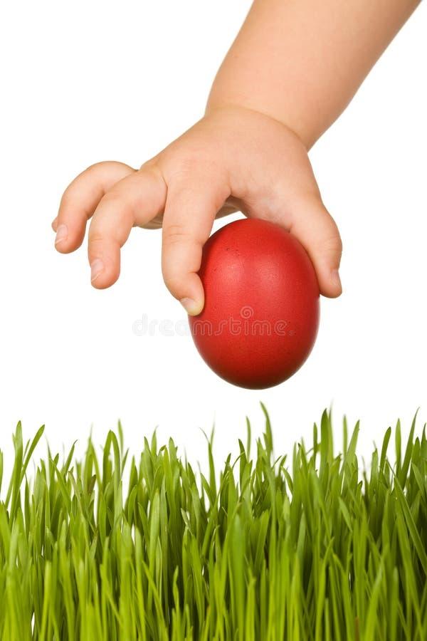 Mano del niño con el huevo de Pascua sobre hierba fotos de archivo libres de regalías