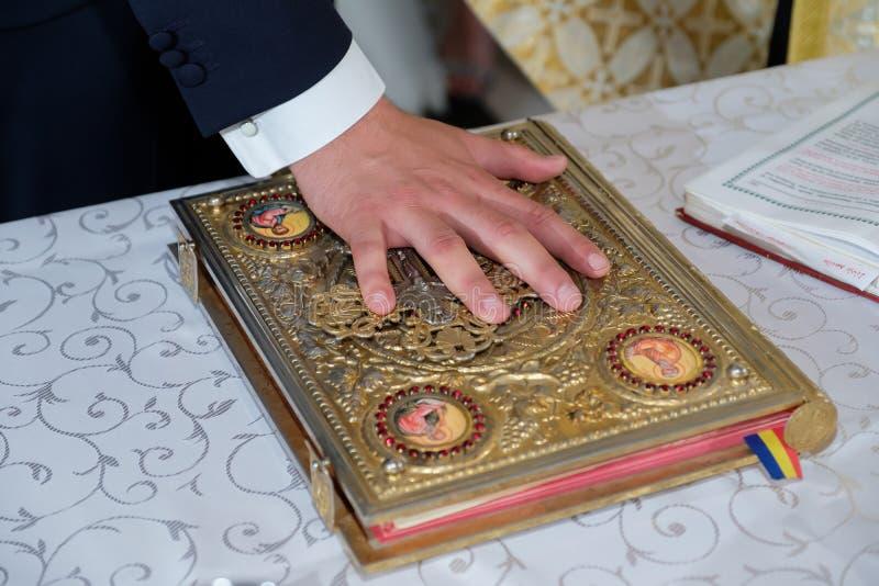 Mano del novio en la biblia foto de archivo