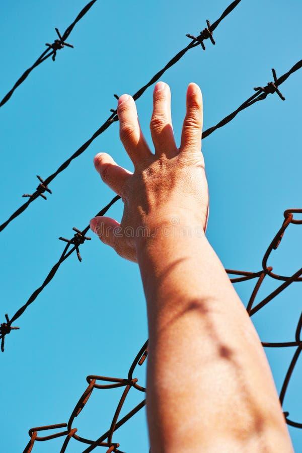 Mano del preso que lleva a cabo las barras de hierro imagenes de archivo