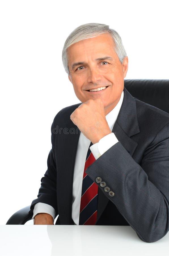 Mano del retrato del hombre de negocios en la barbilla imágenes de archivo libres de regalías