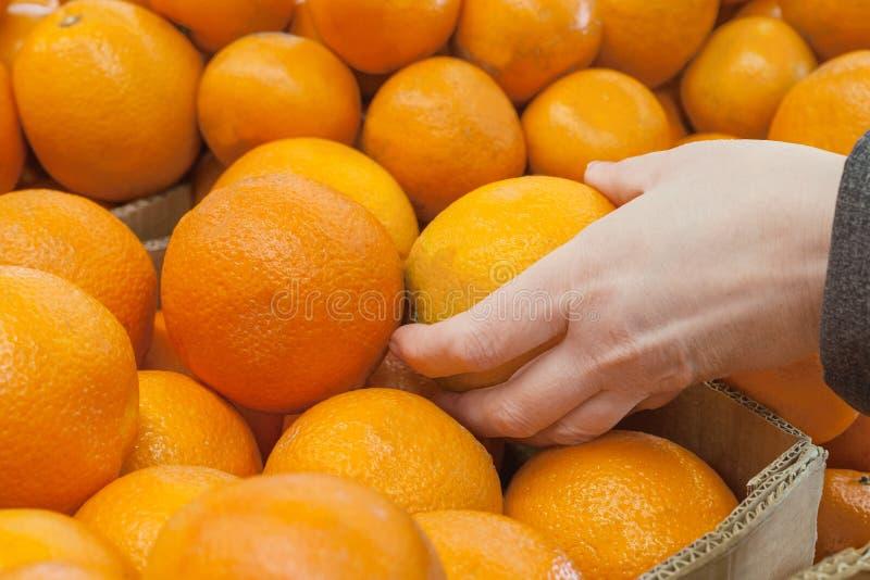Mano del ` s de las mujeres que elige las naranjas en mercado imagen de archivo