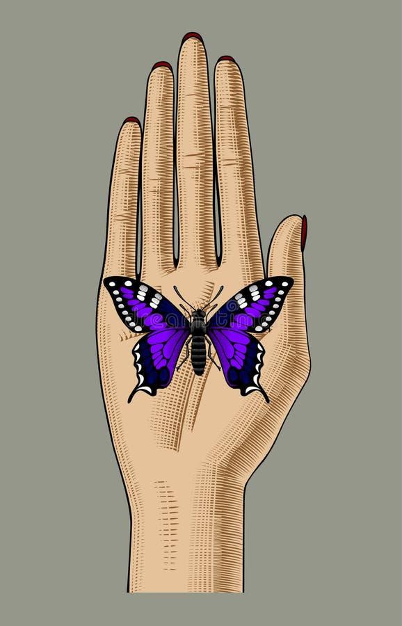 Mano del ` s della donna con una farfalla viola che si siede sulla sua palma illustrazione vettoriale