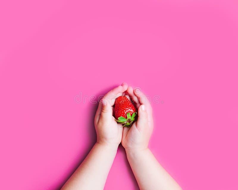 Mano del ` s del niño que sostiene la fresa en fondo rosado, foto de archivo