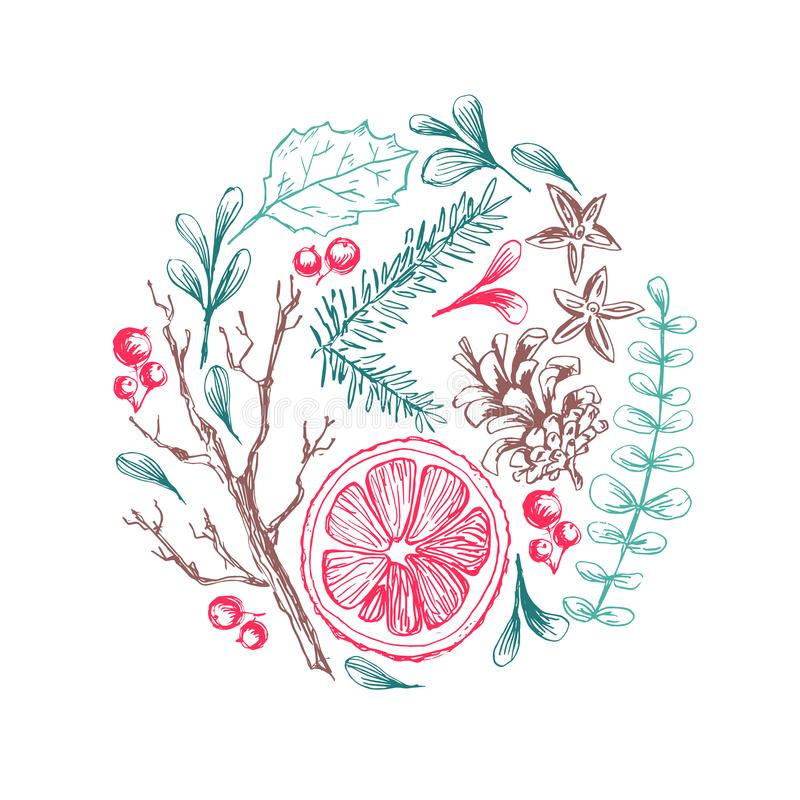 Mano del vector dibujada alrededor del ejemplo con los elementos herbarios naturales de la Navidad Ramas del mu?rdago, de la frut stock de ilustración