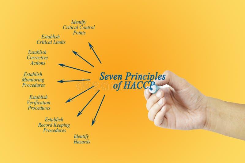 Mano della donna che indica elemento del principio di HACCP per utilizzato nella fabbricazione illustrazione vettoriale