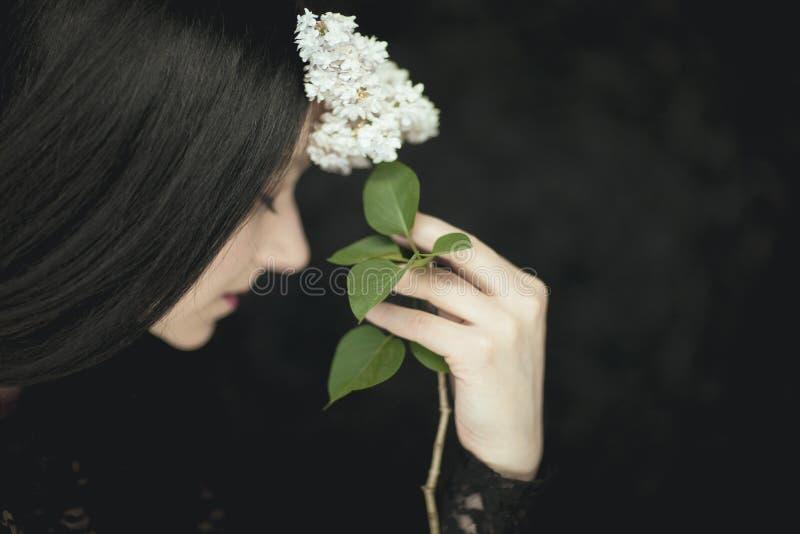 Mano della donna che tiene i fiori lilla bianchi freschi al suo fronte, colpo rurale sensuale atmosferico molto scuro dello studi immagine stock libera da diritti