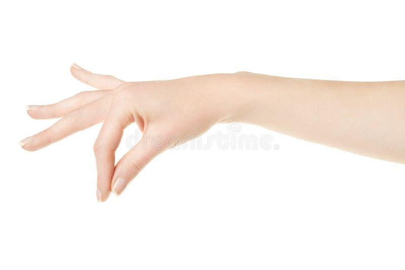 Mano della donna con gli elementi della tenuta del manicure fotografia stock