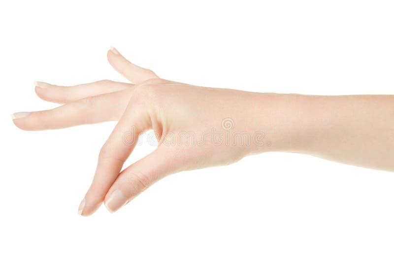 Mano della donna con gli elementi della tenuta del manicure fotografia stock libera da diritti