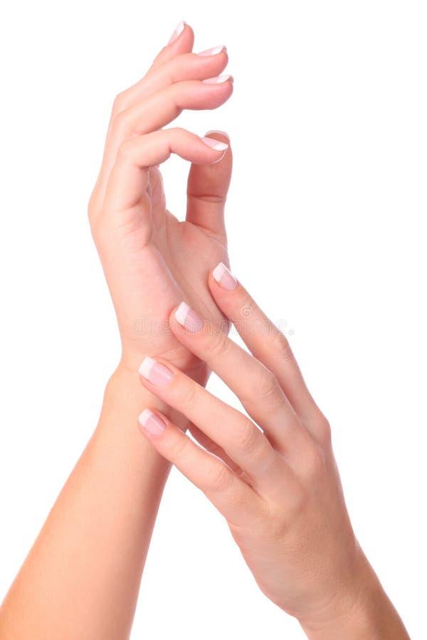 Mano della donna con il manicure immagine stock libera da diritti