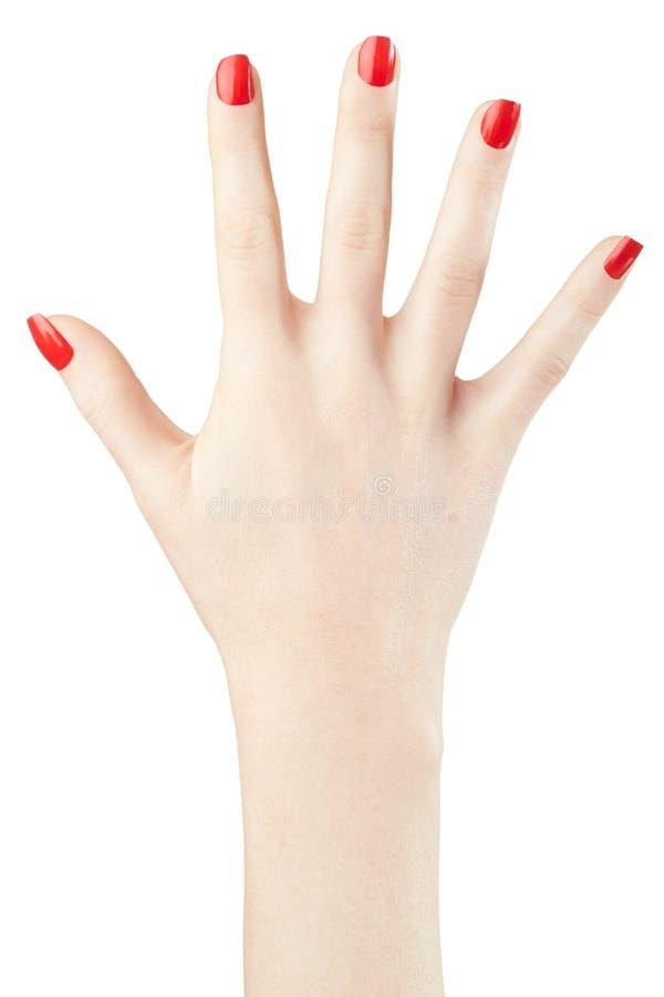 Mano della donna con smalto rosso sollevato su fotografia stock