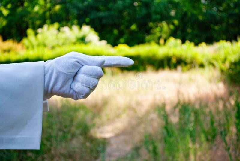 Mano di un cameriere in un guanto bianco che mostra un segno contro un fondo della natura immagini stock