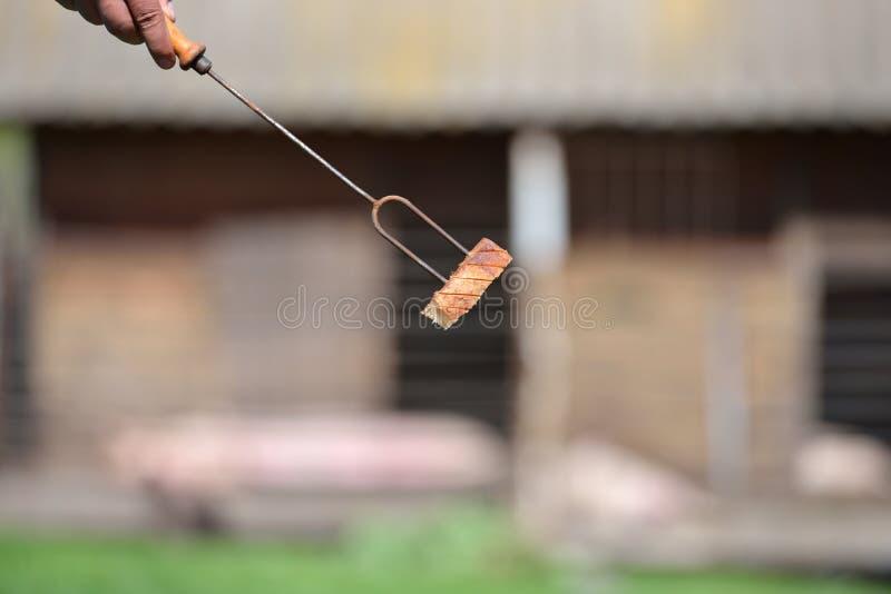 Mano di una persona che tiene una forcella con una fetta di bacon per la barra immagini stock