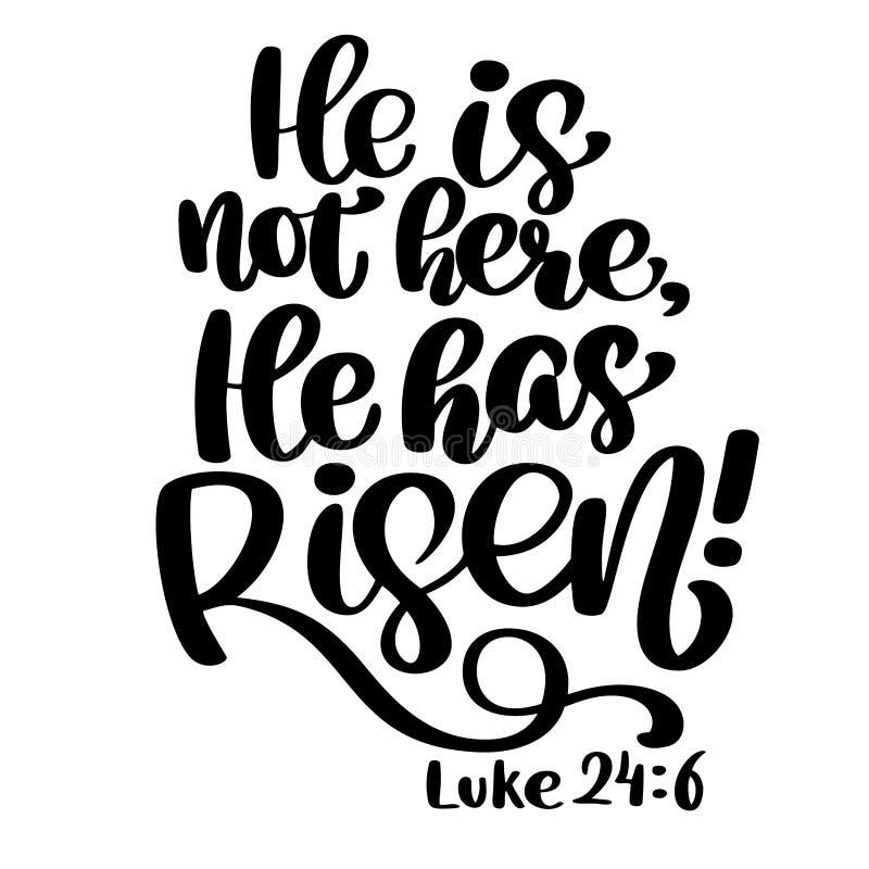 Mano dibujada él ha subido, el texto 6 de Lucas 24 en el fondo blanco Fondo bíblico Nuevo testamento Verso cristiano, vector libre illustration