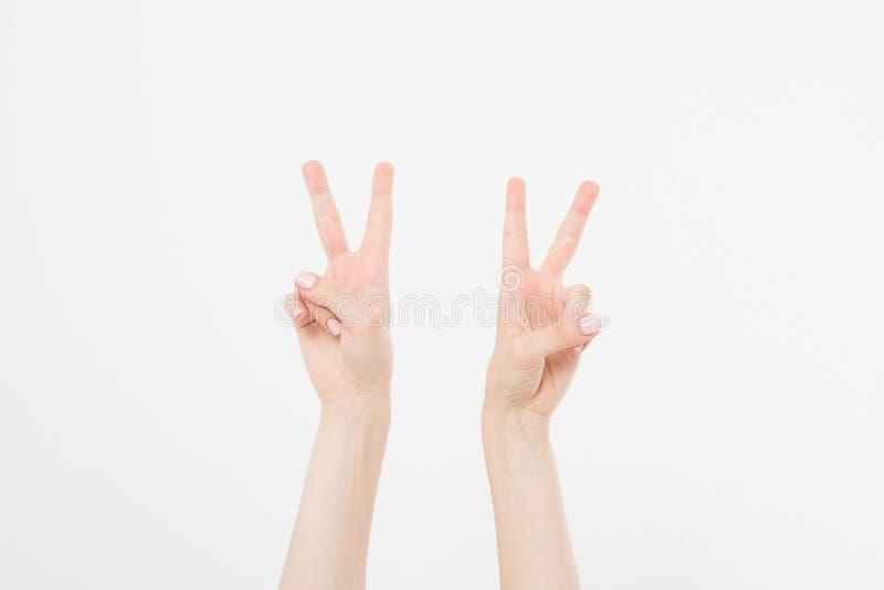 Mano due che mostra il segno della vittoria o del primo piano di pace isolato su fondo bianco Front View Derisione su Copi lo spa immagine stock libera da diritti