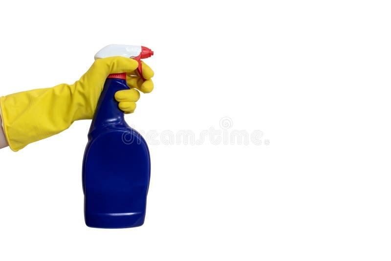 Mano en el guante de goma amarillo que lleva a cabo un cierre de limpieza azul de la botella del espray para arriba aislado en bl fotos de archivo