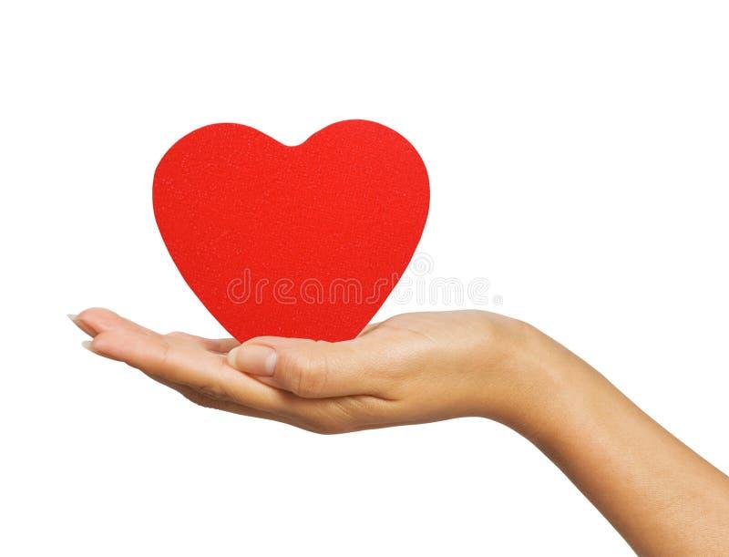 Mano femenina con el corazón imagen de archivo