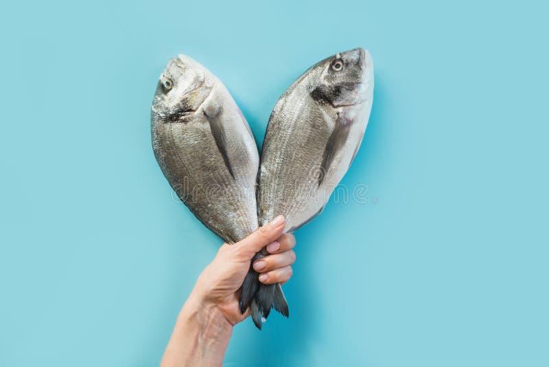 Mano femenina con la cola de dos pescados del dorado en el papel azul como color del mar imágenes de archivo libres de regalías