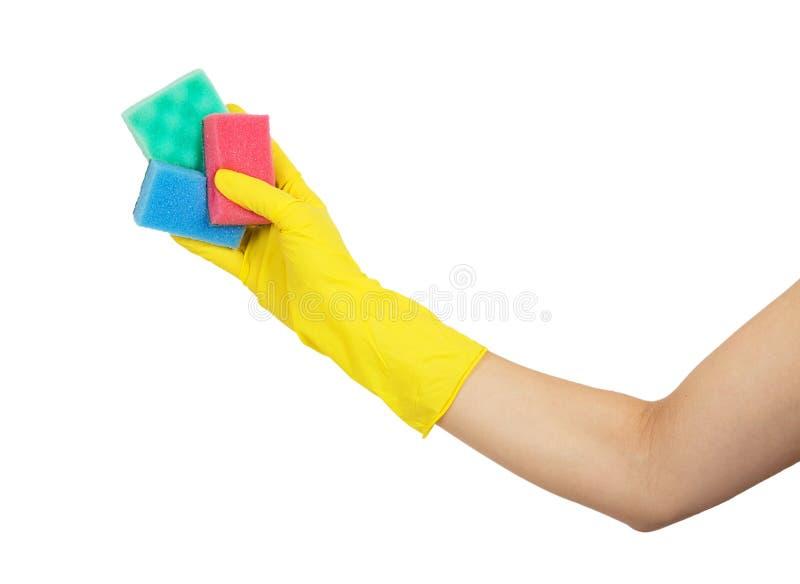 Mano femenina en el guante amarillo que se sostiene con las esponjas coloridas foto de archivo