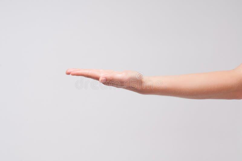 Mano femenina Primer de una palma del ` s de la mujer en el fondo blanco foto de archivo libre de regalías