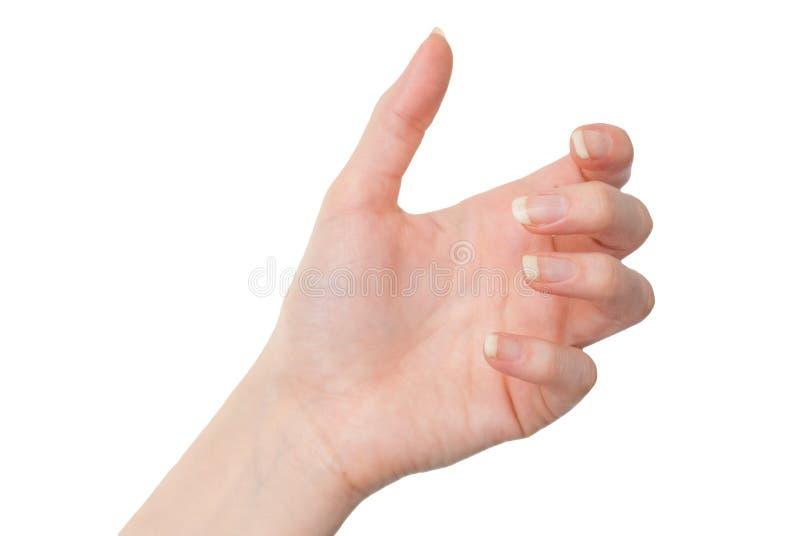 Mano femenina que lleva a cabo algo con la palma aislada en blanco imagenes de archivo