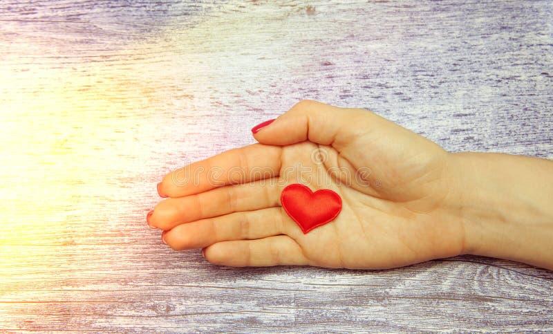Mano femenina que lleva a cabo el corazón rojo en un fondo ligero fotografía de archivo libre de regalías