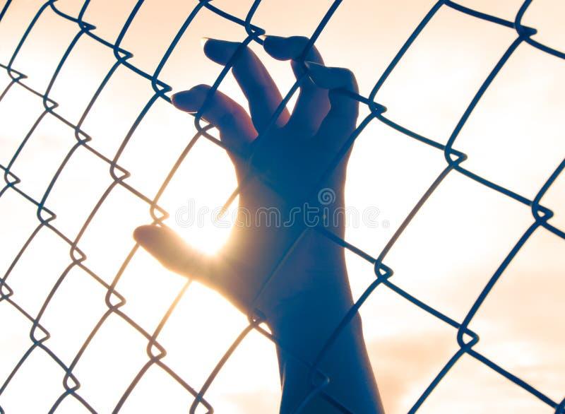 Mano femenina que sostiene encendido la cerca de la alambrada imagen de archivo libre de regalías