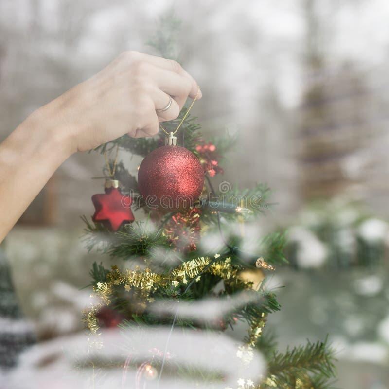 Mano femminile che appende un ornamento rosso brillante di Natale su un albero fotografie stock