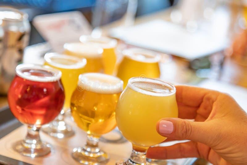 Mano femminile che prende vetro di micro birra di miscela da varietà sopra immagine stock