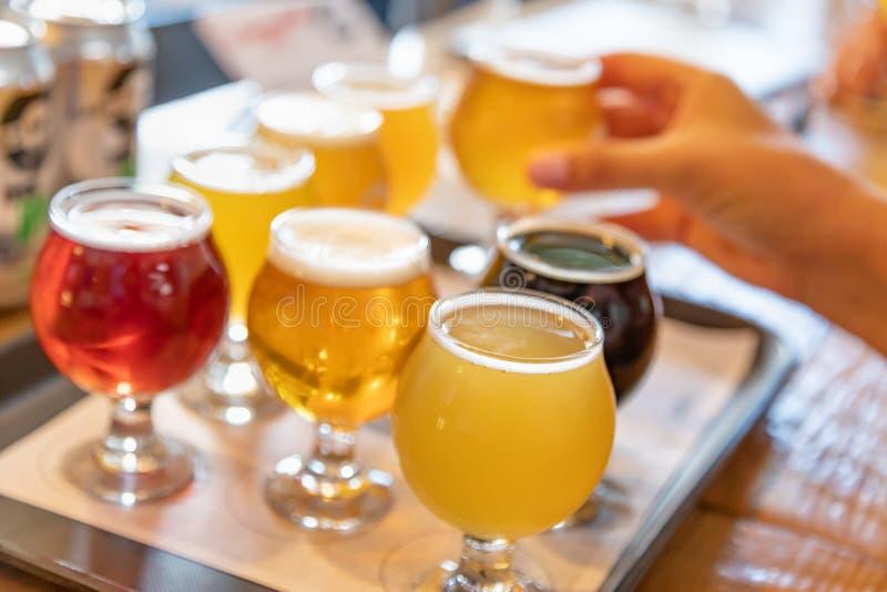 Mano femminile che seleziona vetro di micro birra di miscela a partire dalla varietà immagini stock