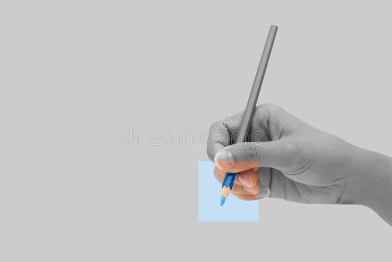Mano femminile con la matita blu di colore isolata su fondo grigio fotografia stock