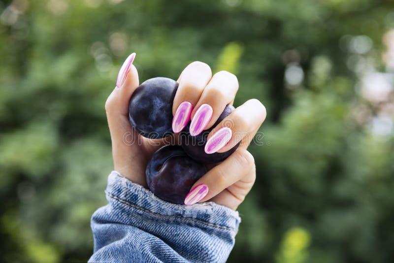Mano femminile con un bello manicure rosa fotografia stock