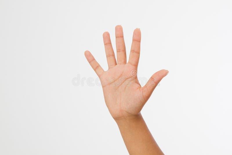 Mano femminile estesa nel saluto sul bianco Mano nera isolata su bianco Derisione su Copi lo spazio mascherina blank immagine stock