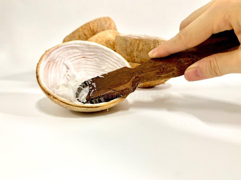 Mano hermosa de la mujer que lleva a cabo la mano rallada del coco y que raspa el aislante joven del coco en el fondo blanco, nuc imágenes de archivo libres de regalías