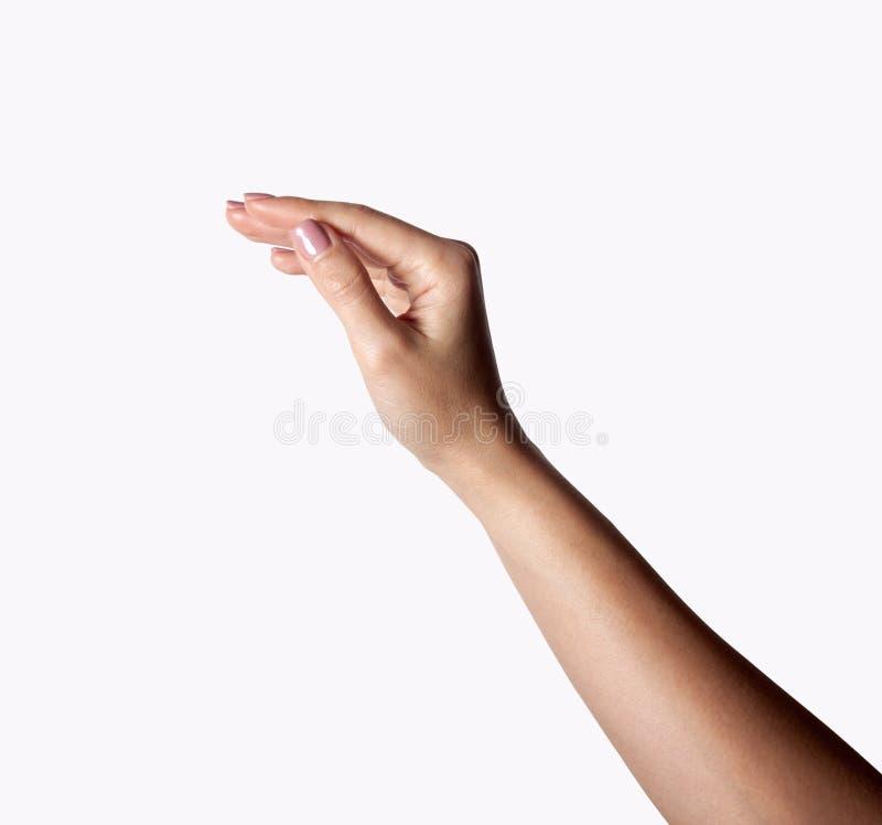 Mano hermosa y brazo femeninos aislados en blanco fotos de archivo libres de regalías
