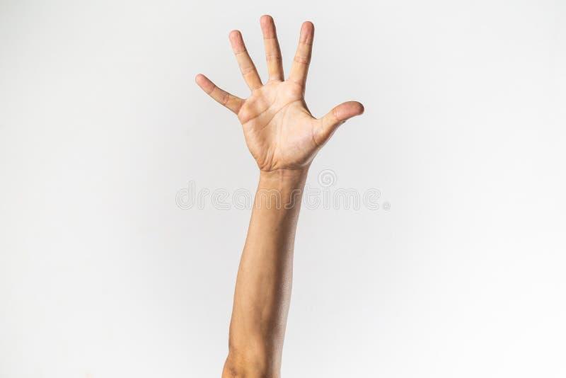 mano levantada aislada foto de archivo libre de regalías