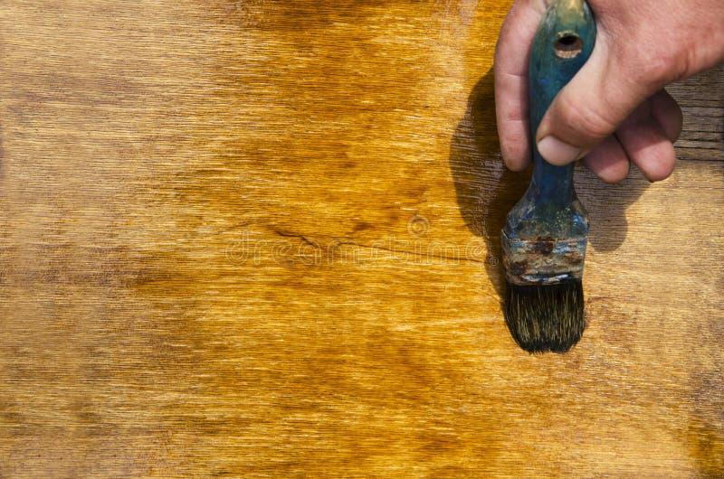 Mano maschio che tiene vecchio pennello e che vernicia superficie di legno con  fotografia stock