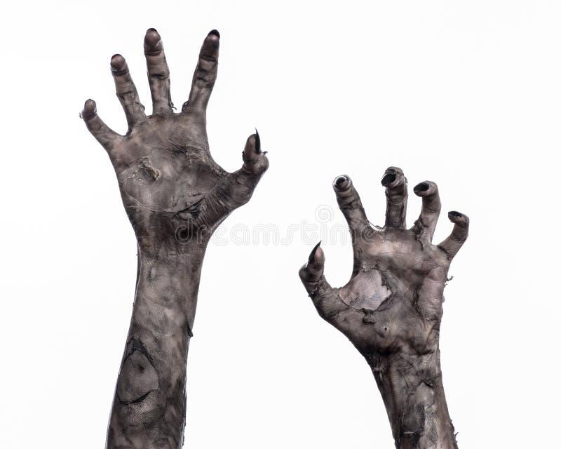 Mano negra de la muerte, el caminar absolutamente, tema del zombi, tema de Halloween, manos del zombi, fondo blanco, manos de la  imagen de archivo