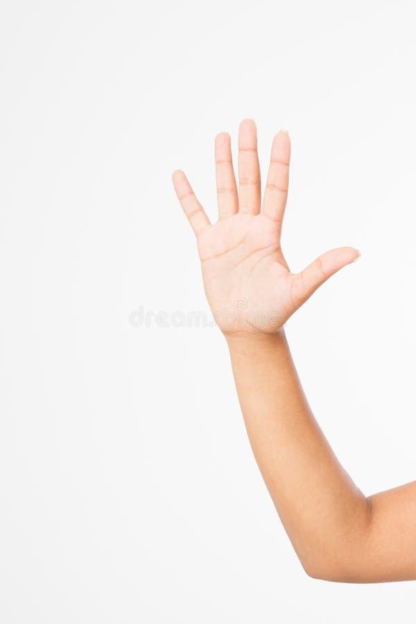 Mano nera isolata su bianco Mano di voto Derisione su Copi lo spazio mascherina blank immagine stock
