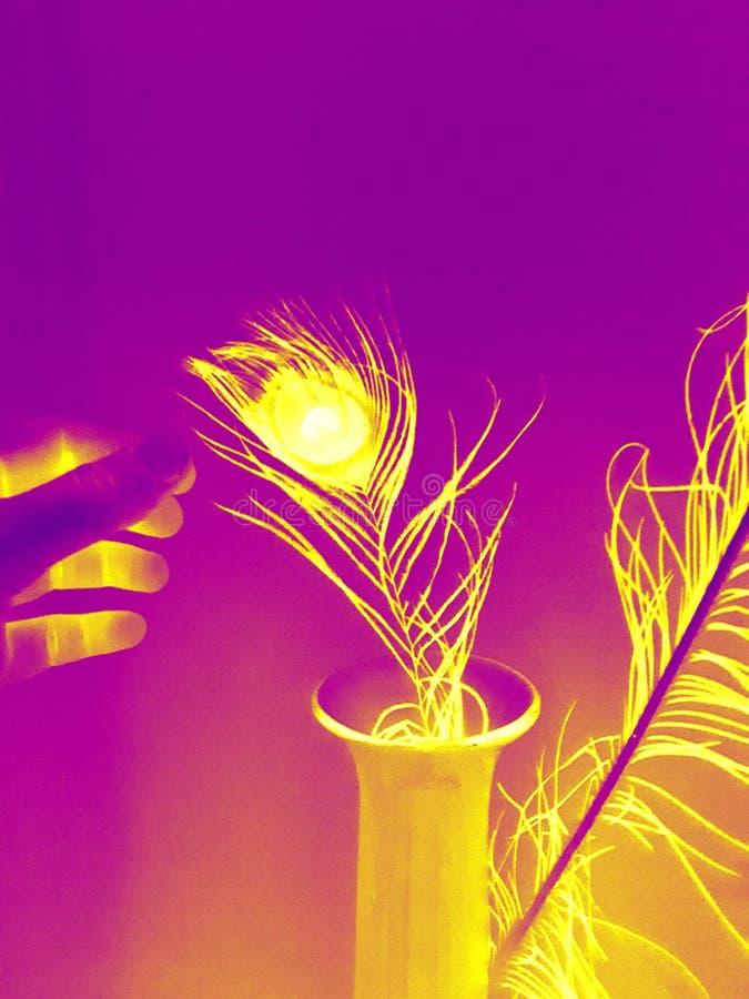 Mano púrpura del efecto luminoso de la pluma del diseño fotografía de archivo