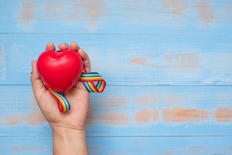 Mano que lleva a cabo forma roja del heartr con la cinta del arco iris de LGBTQ en el fondo de madera en colores pastel azul para fotos de archivo libres de regalías