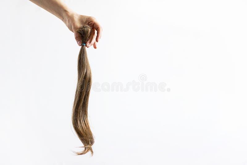 Mano que lleva a cabo la donación larga del pelo rubio apretada con el ponio de la cinta para el enfermo de cáncer en el fondo bl imagenes de archivo
