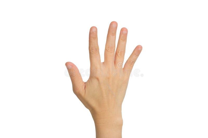 Mano que muestra los cinco fingeres fotos de archivo libres de regalías