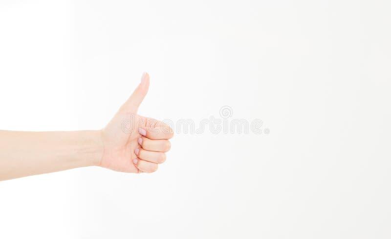 mano que muestra uno o como la cuenta aislada en el fondo blanco Mofa para arriba Copie el espacio modelo blank imágenes de archivo libres de regalías